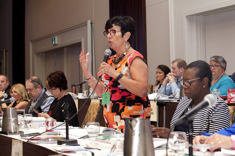 Susan Swackhammer addresses the floor