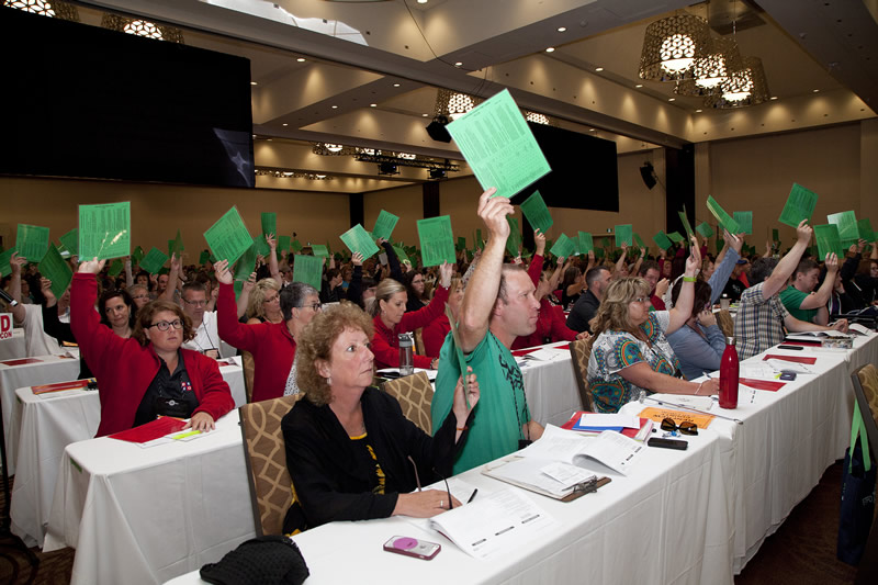 Delegates voting on a resolution
